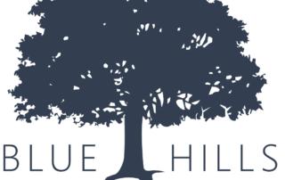 Blue Hills Chiropractic