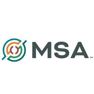 MSA Professional Services